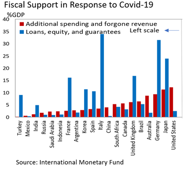 Fiscal Support in Response to Covid
